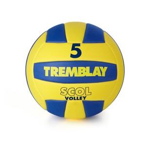 Školská volejbalová lopta v. 5