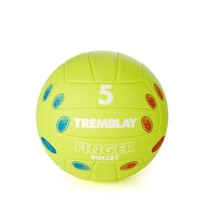 Volejbalová lopta s prstami v. 5