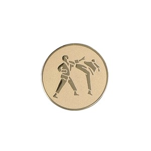 Emblém Karate A60