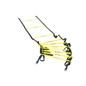Koordinačný rebrík