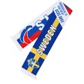 eshop/d/demisport/2021/05/slovensko---svedsko-2.jpg
