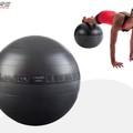 eshop_sfz/5963/412a/2f71/1660/c1cc/c1c2/5963412a2f711660c1ccc1c2/gymnasticka-lopta-s-pumpou-65cm-1.jpg