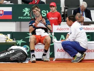 Šance Slovákov v Davis Cupe stúpli, Raonic chýba v kanadskej nominácii