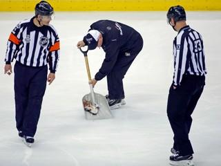 Počas finále NHL hodil na ľad mŕtveho sumca. Fanúšik nedostal žiadny trest