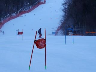 Vlhová v pondelok nesúťažila, obrovský slalom žien odložili
