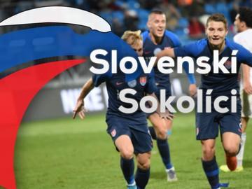 Slovenskí sokolíci