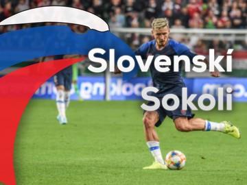 Slovenskí sokoli