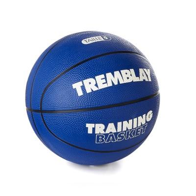 eshop/d/demisport/2020/05/basketbalova-treningova-lopta-v.-5.jpg