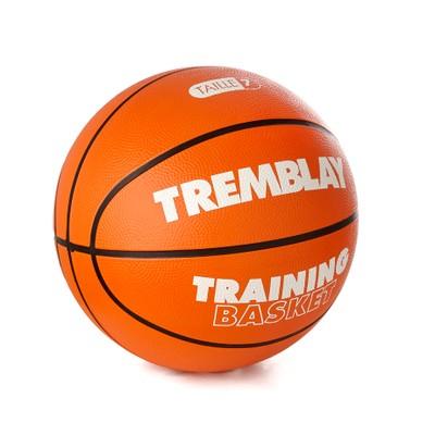 eshop/d/demisport/2020/05/basketbalova-treningova-lopta-v.-7.jpg
