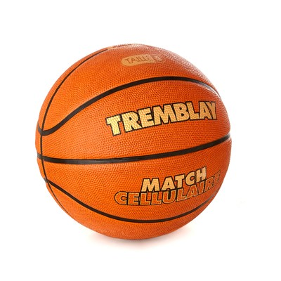 eshop/d/demisport/2020/05/basketbalova-zapasova-lopta-v.-5.jpg